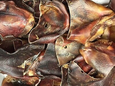 1 Net of Quality Pigs Ears (50 in total) 25 XL Sows Cut into 2. REAL BARGAIN