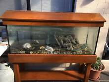 4FT FISHTANK AND ALL Lidcombe Auburn Area Preview