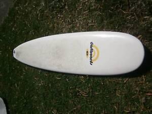 8'0 mini mal surfboard