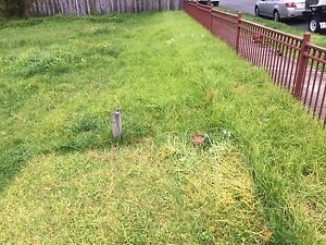 Cheap Lawn Mowing Preston Darebin Area Preview