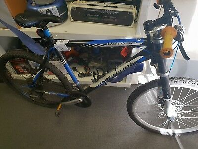 Barracuda Obtuse Bike 21inch downhill mountain bike massive forks low start