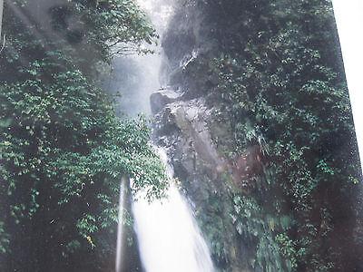 La Paz Waterfall (Steve Vaughn Signed Framed Art Photo La Paz Costa Rica Tropical Waterfall)