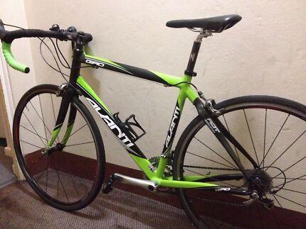 Avanti Giro road bike, RRP 2300, Shimano 105 groupset, medium size  Neutral Bay North Sydney Area Preview