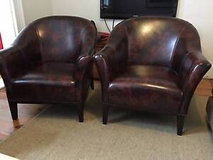 Classy armchairs Annandale Leichhardt Area Preview