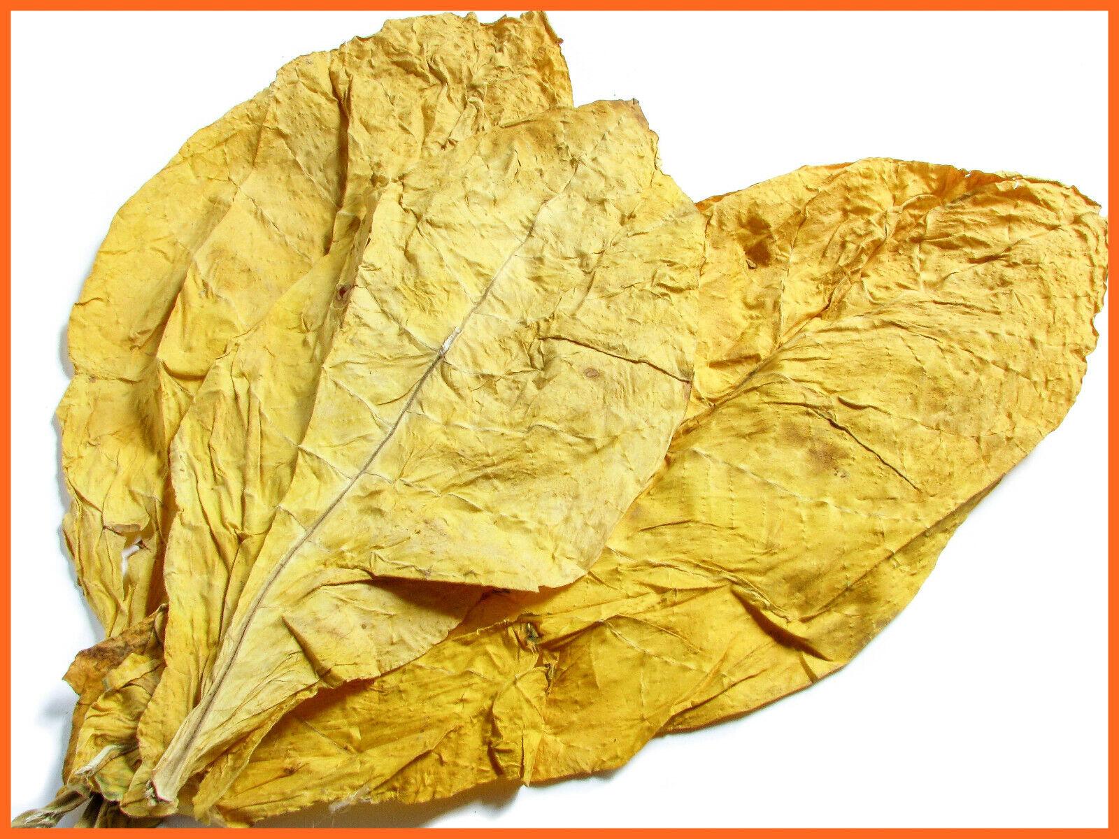 Virginia Gold Klasse 1 Rohtabak Blätter Duft & Deko Tabakblätter