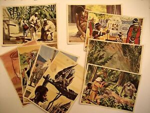 Sanella Bilder für Sammelalbum AFRIKA