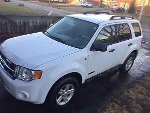 Hybrid Ford Escape
