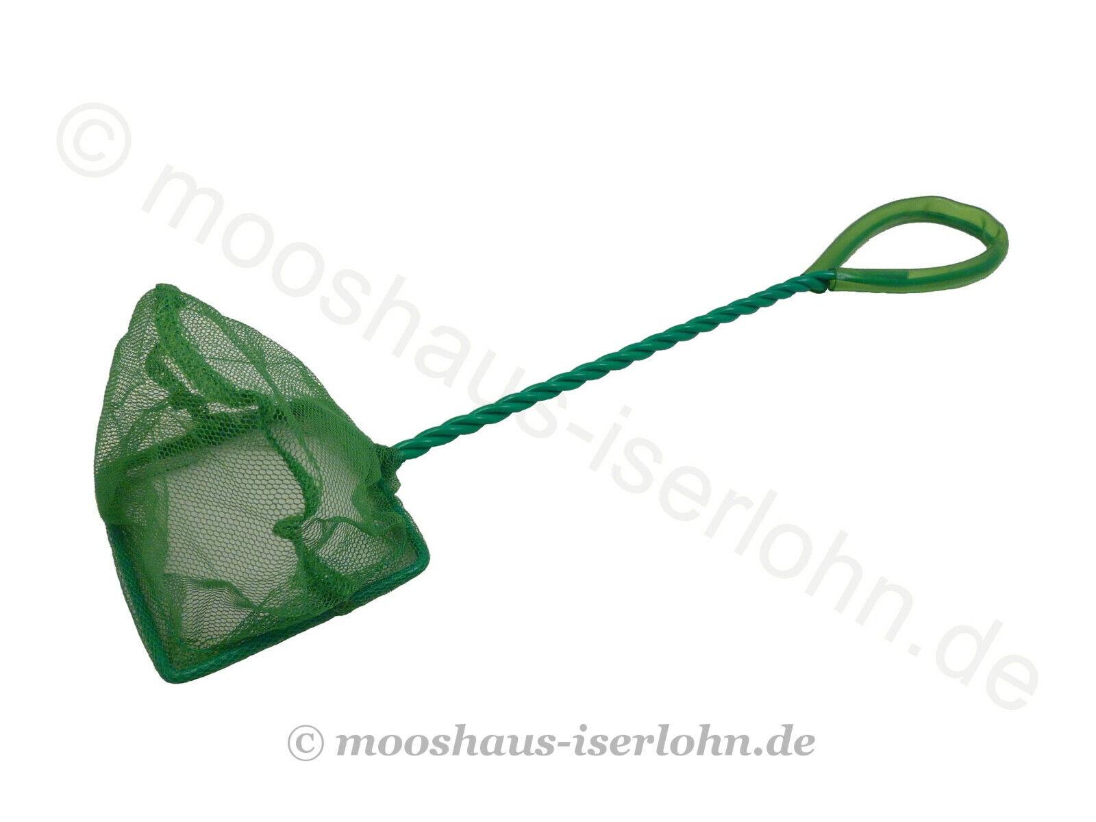 Fischfangnetz grün fein 8 x 6cm Aquarium Kescher Nano Garnelenkescher