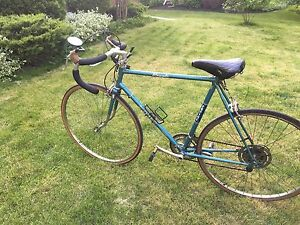 Vintage Empire Royal Road Bike