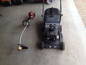 Lawnmower and line trimmer package Springfield Ipswich City Preview