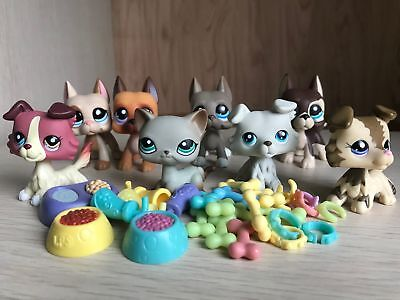 8lot Littlest Pet Shop LPS Toy Cat #391 Great Dane Dog Collie&4xAccessories Rare