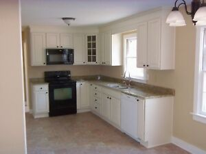 Are you renovating your kitchen?