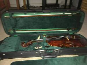 Violin Professional 4/4 Mitchell Park Marion Area Preview