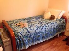 SINGLE WOODEN BED WITH SOLID SPRING MATTRESS Cranebrook Penrith Area Preview