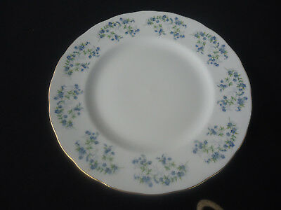 Queen Anne Bone China (queen anne bone china sonata forget me nots  8598 dinner plate)
