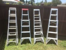 Ladders Tingalpa Brisbane South East Preview
