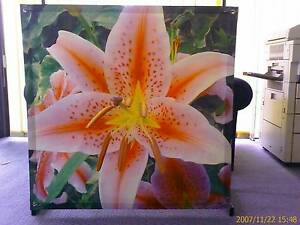 YARD ART - PINK Lily - Beautiful Outdoor – HUGE 1m x 1m *Fade Res Bligh Park Hawkesbury Area Preview
