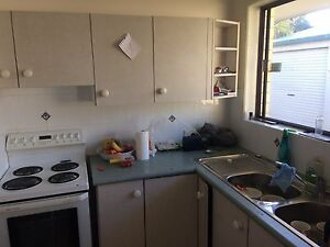 Kitchen Golden Beach Caloundra Area Preview