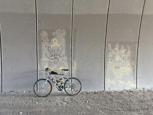 Motorized bike build