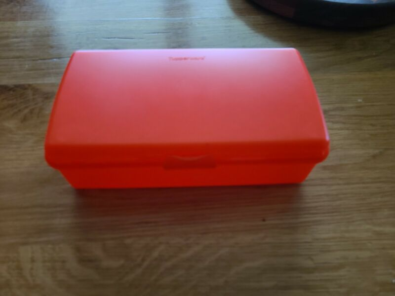 Tupperware Sandwich Keeper Rectangle Sub/Hoagie Container~Coral NEW