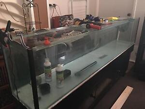 Fish Tank 7 feet long Ngunnawal Gungahlin Area Preview