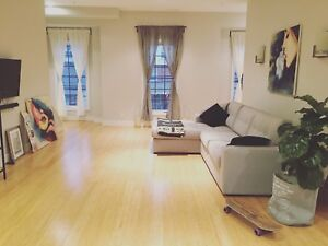 Luxury loft short term sublease month of February