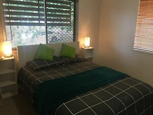 $320* Wooloowin fully furn. Wi-Fi 1 brm Aircon LUG great suburb Wooloowin Brisbane North East Preview