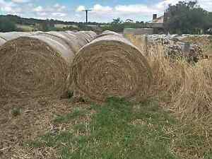 Hay For Sale Macclesfield Mount Barker Area Preview