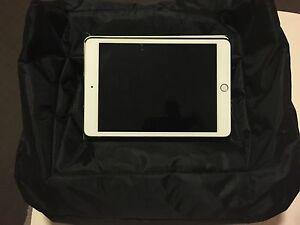 Ipad/tablet pillow Seventeen Mile Rocks Brisbane South West Preview