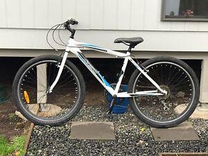 Reid mountain bike Cessnock Cessnock Area Preview