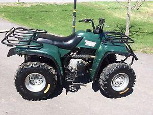 2005 Yamaha Bear Tracker 250