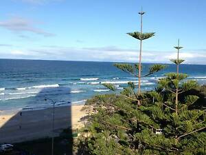 Amazing share room! beachfront, Surfers Paradise!! Surfers Paradise Gold Coast City Preview