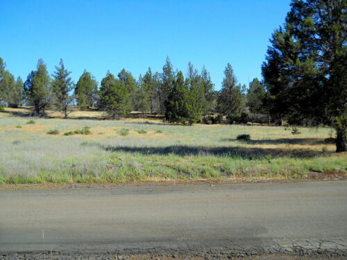 1 ACRE - Hornbrook, California !!! YOU MUST SEE THIS LAND !!