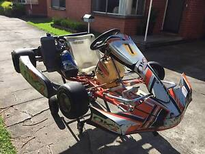 Ready to Race TAG 125cc GO KART w/ Trailer Parkdale Kingston Area Preview