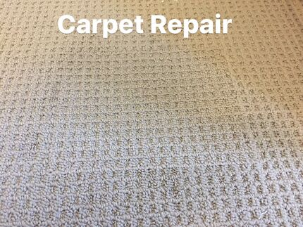 Professional Carpet Cleaning And Restoration And More/ No Hidden Fees