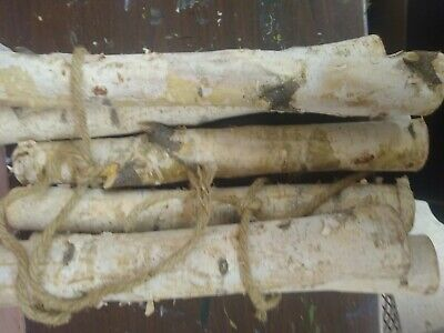 6 Pack Large White Birch Logs for Fireplace Unfinished Wood Crafts DIY Home D... Birch Fireplace Logs