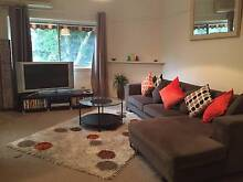 Room for Rent in 3 Bedroom House - Caringbah Caringbah Sutherland Area Preview