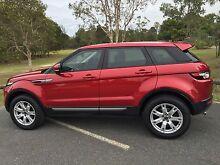 2013 Land Rover Range Rover Evoque TD4 Pure Auto 4x4 Diesel Geebung Brisbane North East Preview