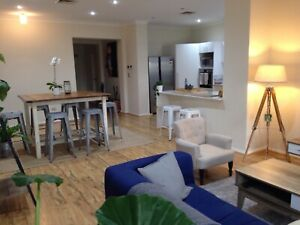 F/F Large Single Room available in East Perth (Bills inc. & free WIFI)