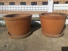 2 terracotta pots with saucers Golden Beach Caloundra Area Preview