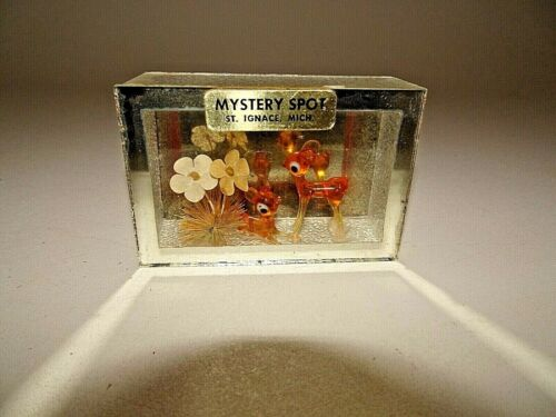 Vintage Mystery Spot St Ignace Michigan Souvenir Glass Box Mirror Deer Flowers