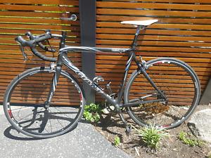 Road Bike (Giant)