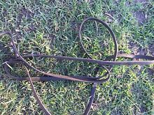 Horse leather reins brown FREE Farley Maitland Area Preview