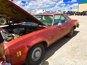 Looking for 1977 chevelle Malibu rust free body parts