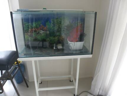FISH TANK 36INCH