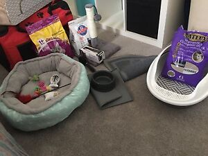 Cat Stuff/Things Carbrook Logan Area Preview