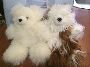 Alpaca teddies Landsborough Caloundra Area Preview