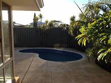 Your very own sparkling pool for summer! East Victoria Park Victoria Park Area Preview