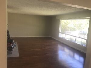 3 large bedroom all inclusive top of house! Available now