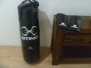 Sting 3ft punch bag and pair of mitts Southern River Gosnells Area Preview